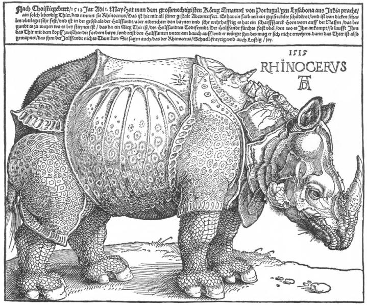 dc3bcrer_rhino